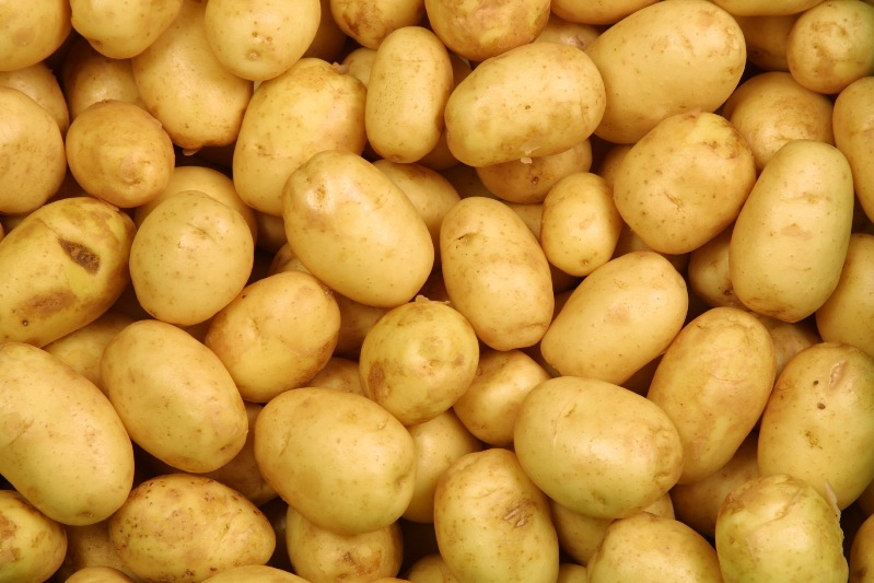 ProduceWorldPotatoes1  Produce World Group Expands Through Acquisition ProduceWorldPotatoes1